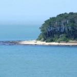 Que visitar en Punta del Este