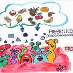 ¿Qué beneficios aportan los probióticos y prebióticos?