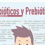 Beneficios de los prebióticos y probióticos para el organismo
