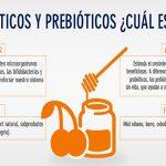 ¿Te haz preguntado qué son los probióticos y los prebióticos?
