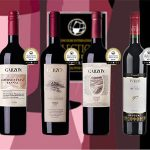 Un acercamiento a los cinco mejores vinos uruguayos