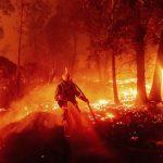 Incendio forestal en San Francisco oeste de EE.UU. causa destrucción y muertes