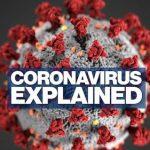 Significativos avances en la vacuna del Covid-19