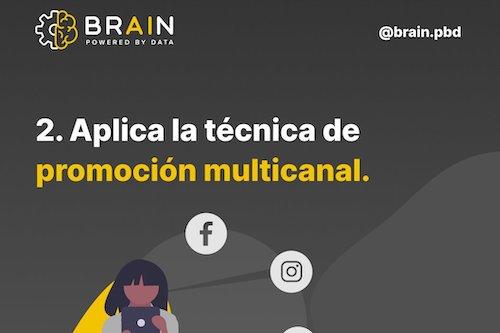 brain pbd